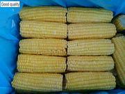 Початки,  оборудывание для варки кукурузы