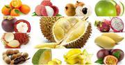Мякоть экзотических фруктов в Казахстане