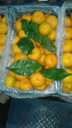 Очень вкусный и спелый мандарин